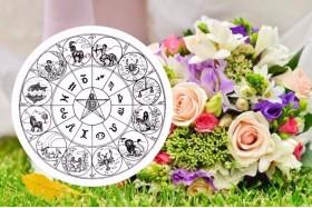 Астрология: выбираем цветы для каждого знака зодиака