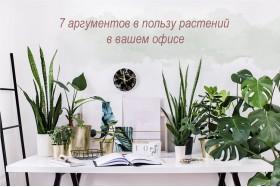 7 аргументів на користь рослин у вашому офісі