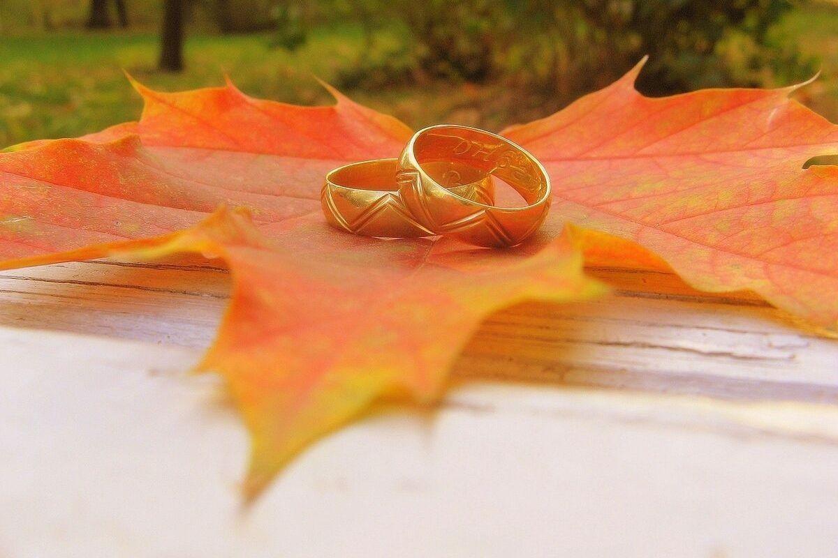 Осінь - кращий весільний сезон. Тепло і затишок в святі життя