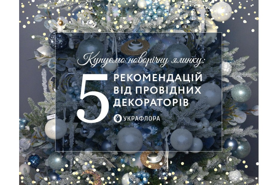 Купуємо новорічну ялинку: 5 рекомендацій від декораторів Украфлори