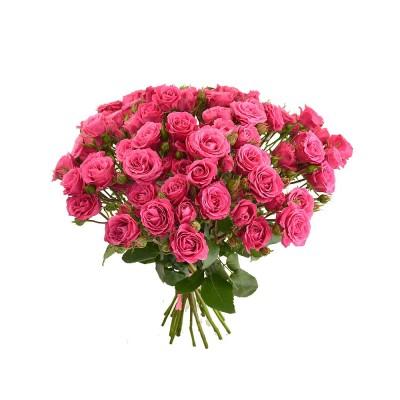 Большой букет из роз Эквадор Pink follies,  6-20665 - купить  в магазине Украфлора по лучшей цене, всего 1 200 грн