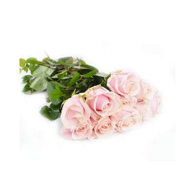 "Роза ""Sweet Avalanche"""