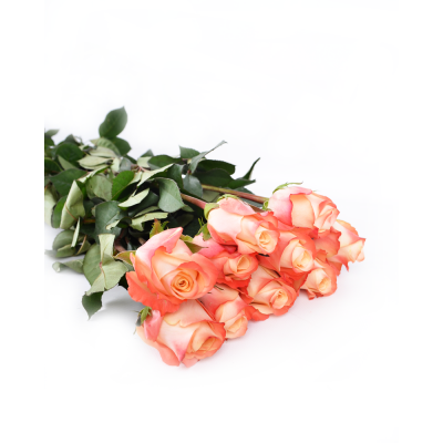 """Роза """"Yashika"""""""