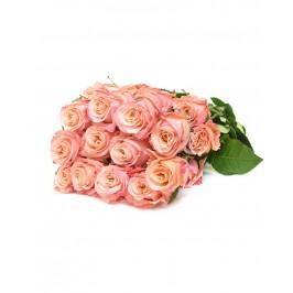 Роза Shimmer Эквадор
