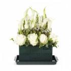 Пена флористическая для срезанных цветов OASIS® Economy Floral Foam, брикет
