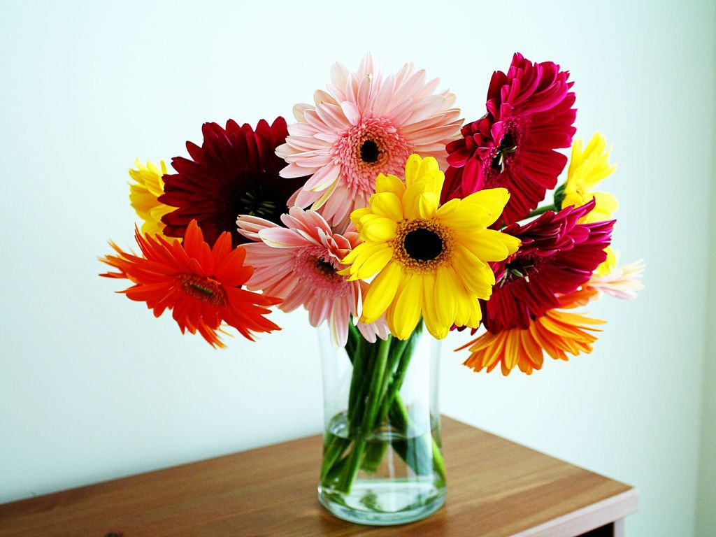 Квіти у вазі: зберігаємо свіжість рослин