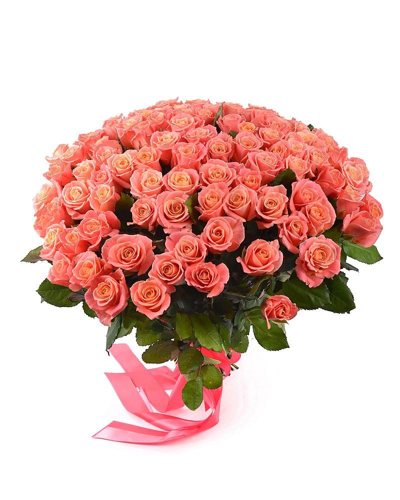Букет зі 101 троянди Міс Піггі