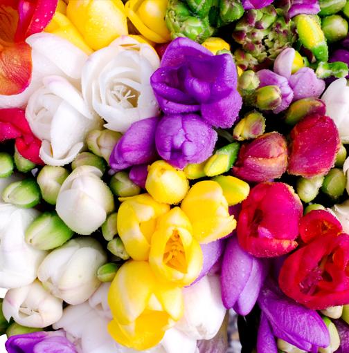 Магазин цветов для вас киев клеманская #6